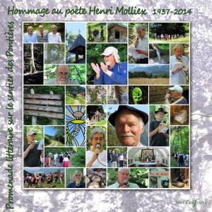 promenade littéraire sur le sentier des Pointières ALBERTVILLE (SAVOIE) en hommage au poète H MOLLIEX le 09 juillet 2016